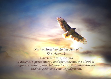 Bird Birthday Card By Stephanie Laird Handmade For Blow – Native Birthday Cards